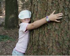Kind-Baum-Kräuerfaszination-Webseite